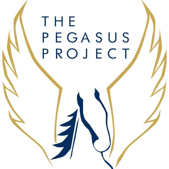 pegasus project Project pegasus greetings you have reached the official website of project pegasus this is the web portal to receive news and information about andrew d basiago.