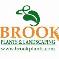 brookplants