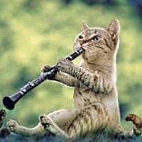 「今日部活休み!?やったー!」  午後になると…  「楽器吹きてぇ」