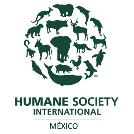 @HSI_Mexico
