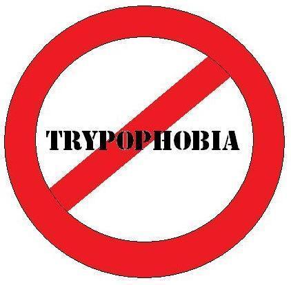 Was ist trypophobia