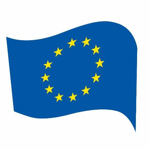 Europäische Bewegung