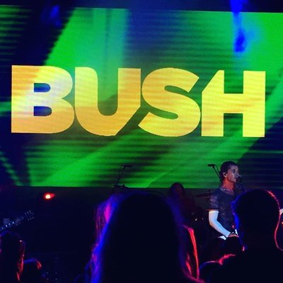 Bush Music Fans | Social Profile