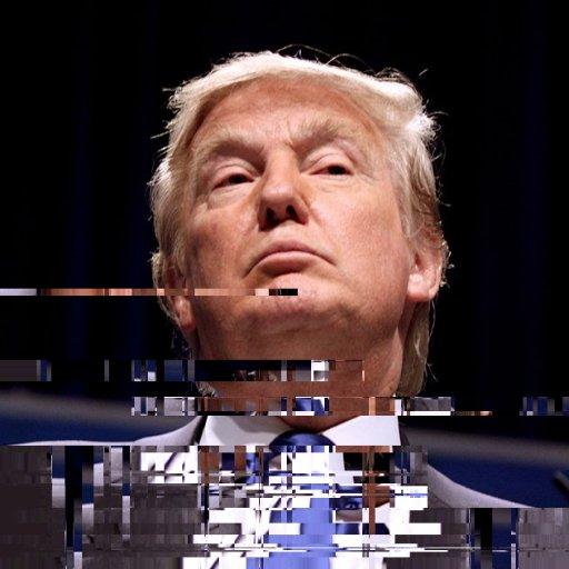 The Donald Trumpeter