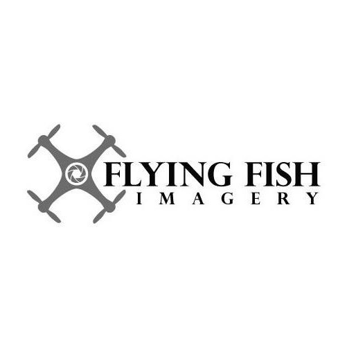 fish imagery