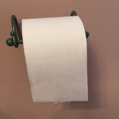 Roll the what is paper toilet girth a of Toilet Paper