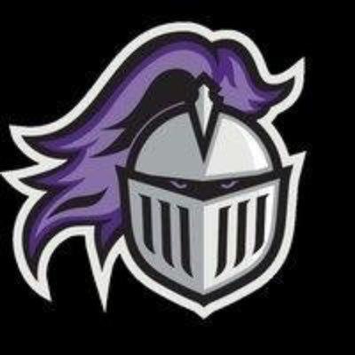 Image result for StuGo purple