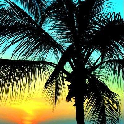 Beach Life Mindset