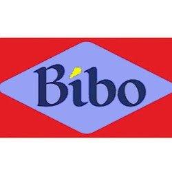 Flash BiBo
