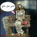 ماجد لصياد (@003qCHqEMrCdU1V) Twitter