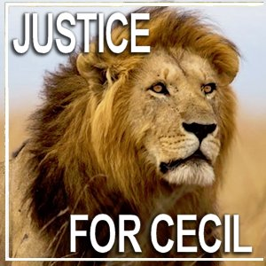 Justice for Cecil