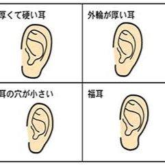 福耳 (@Hu_kumimi) | Twitter