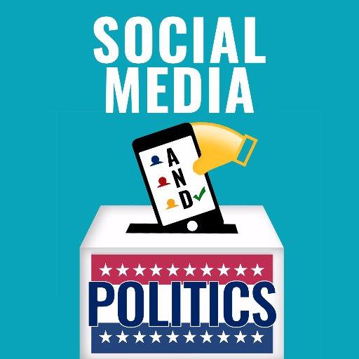Political Campaign Essay Sample