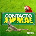 contacto animal usa (@alexmillancer) Twitter