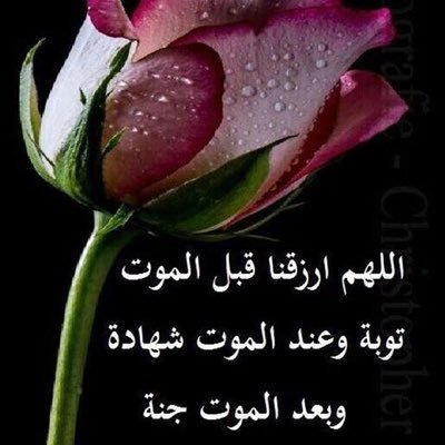 M Hanank M Twitter