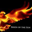 Birds of the Sun