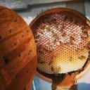 Honey of yemen (@095679Abdullah) Twitter