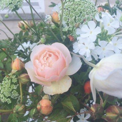 Cornish farm flowers cornishfflowers twitter cornish farm flowers mightylinksfo