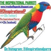 D INSPIRATNAL PARROT