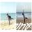 わかちゃん (@win_waca_ner)
