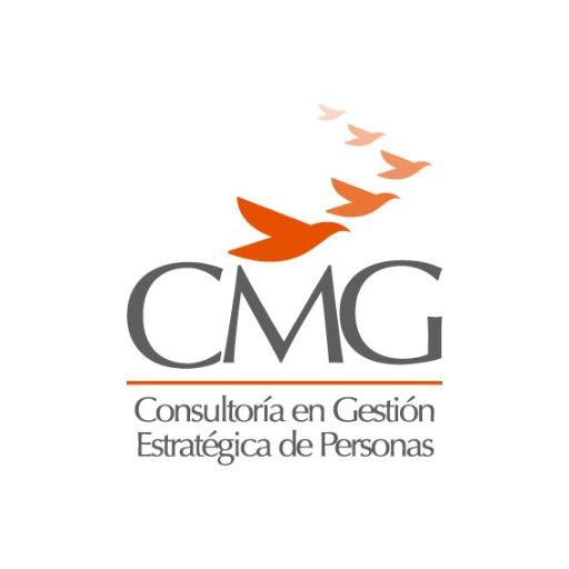 @CMGConsultores