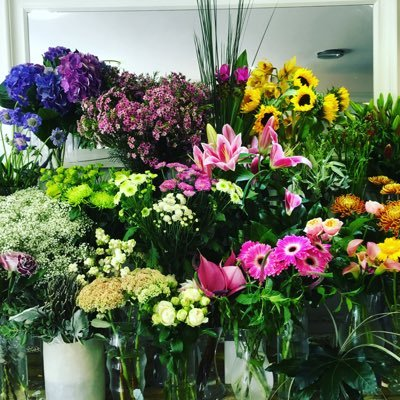 Ultraviolet Flowers