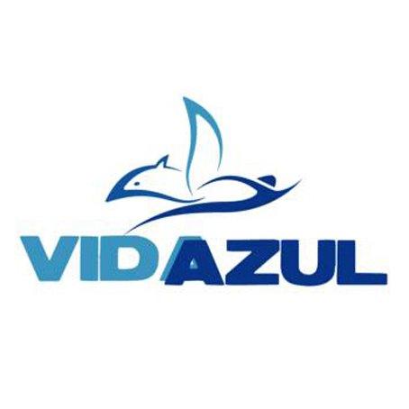 @vidaazul