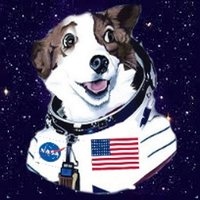 SpaceDawg