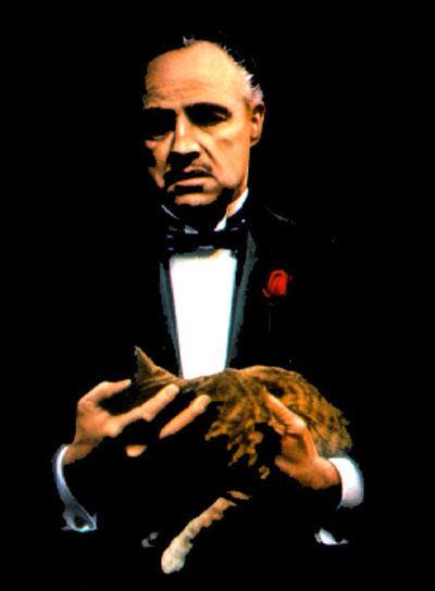Vito Corleone Quotes. QuotesGram