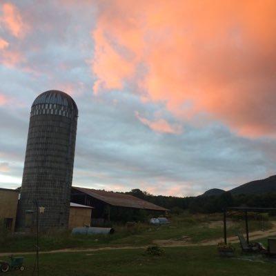 North Meadow Farm Northmeadowfarm Twitter