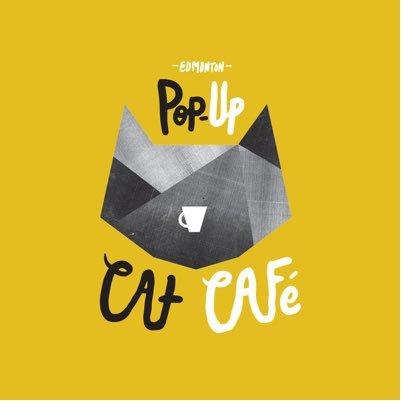Image result for edmonton cat cafe