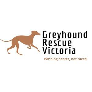 Greyhound Rescue Vic