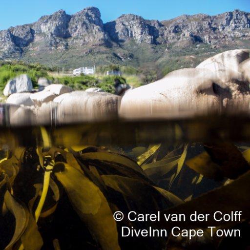 DiveInn Cape Town