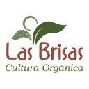 Las Brisas (@00LasBrisas) Twitter