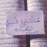 ريم محمد ٍ