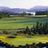 Arbutus Ridge Golf