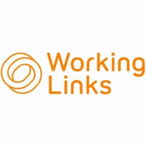 Working Links Social Profile