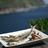 藍ヶ江水産「地魚干物食堂」
