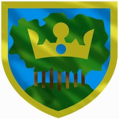 Kingswood RFC darts (@KingswoodRCDart)   Twitter