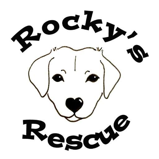 Rocky's Rescue