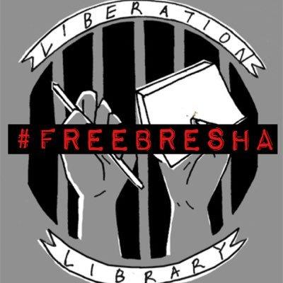 Liberation Library (@liberationlib) Twitter profile photo