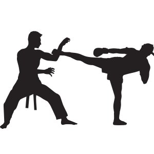 Martial Arts Masters Fighting Styles