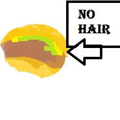 No Hair Hamburger