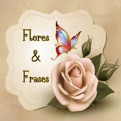 Flores E Frases On Twitter Httpstcoqus3yznta8