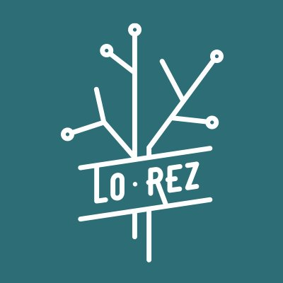 Image result for lo rez brewing logo