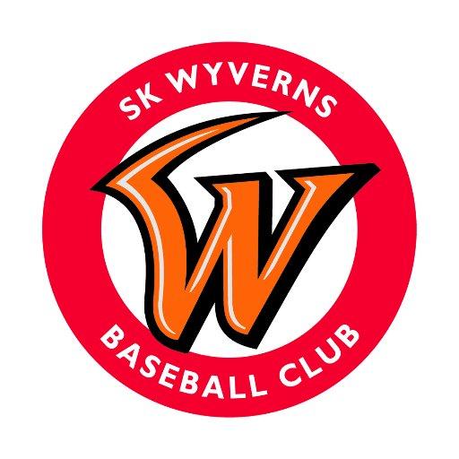Wyverns_Story