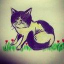 redcat (@0112redcat) Twitter