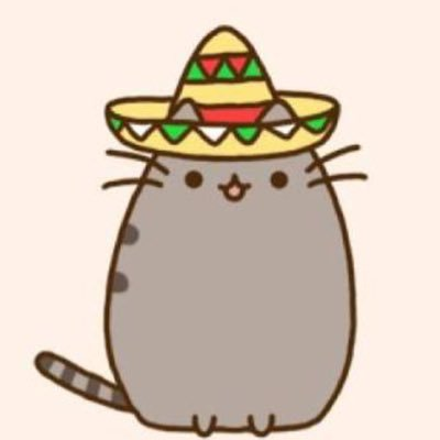 Mexican Cat (@felinemadre) | Twitter