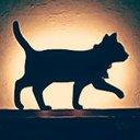 黒猫moon (@0948moon) Twitter