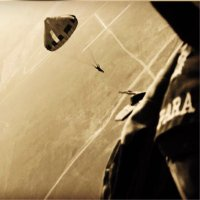 Mahendra Singh Dhoni (@msdhoni) Twitter profile photo